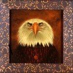 Bald Eagle, 2008