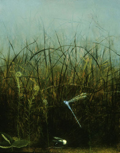 bee and dragonfly in grasses