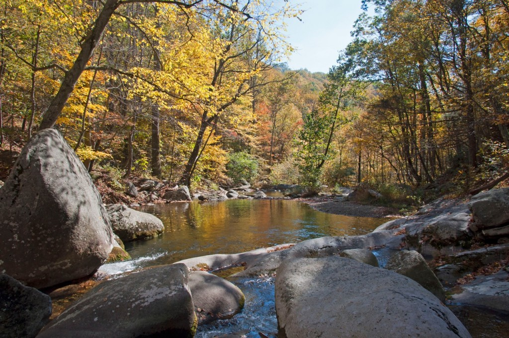 Rapidan Autumn Downstream photo
