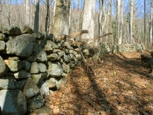 stone wall Shenandoah National Park
