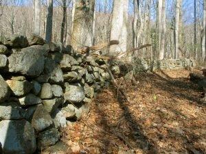 stone wall Shenandoah National Park