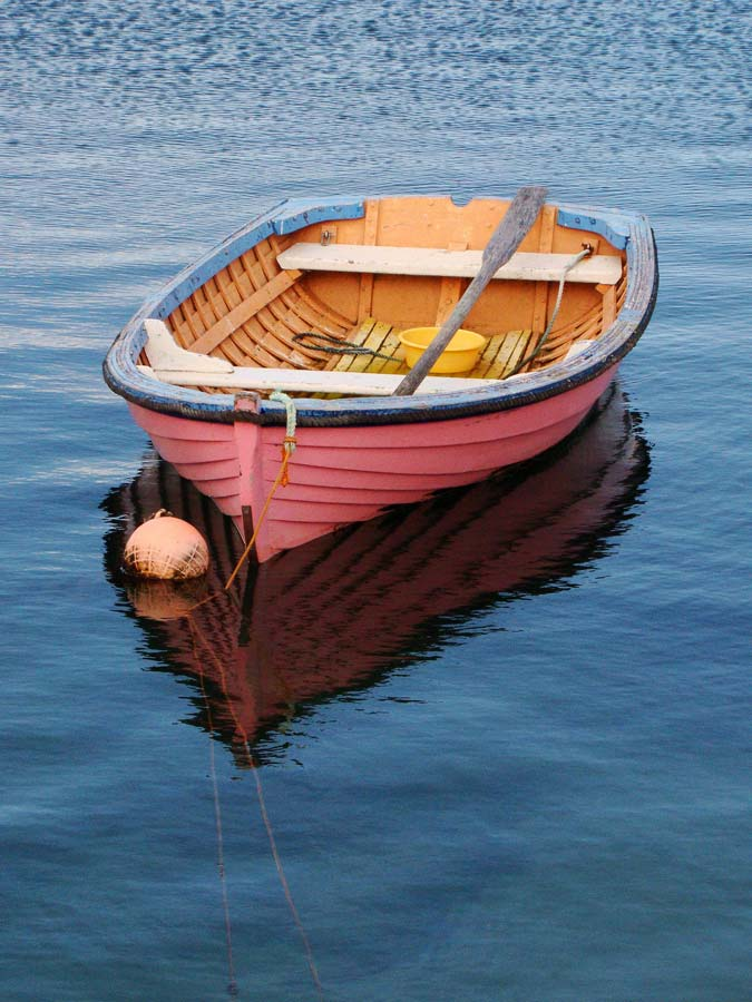 Pink row boat in water