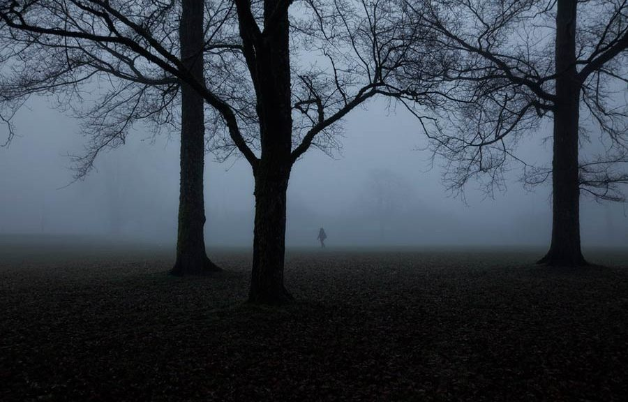 Person walking through trees and fog
