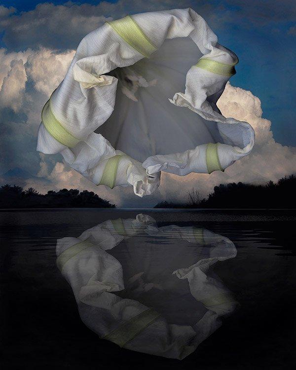 moon flower blossom over dark lake