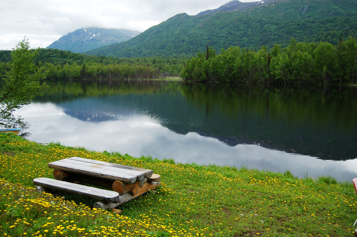 picnic table on bank by lake