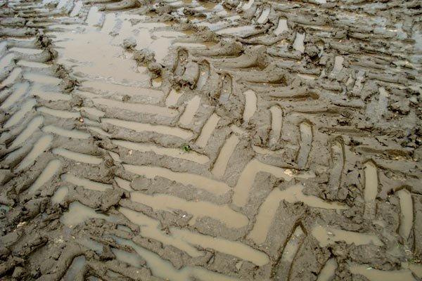 tractor tracks crisscrossed in mud