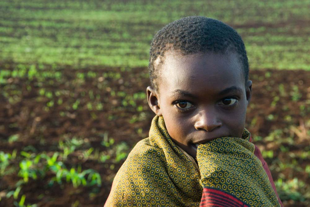 young boy in field of sprouts
