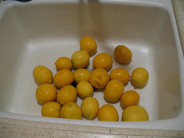 Lemons in white sink