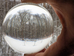 Winter trees through a glass ball