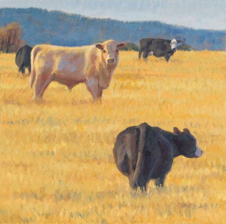 Cows on the hill, painted