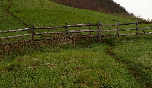 Color photo of green meadow looking up a mountain with wooden fence