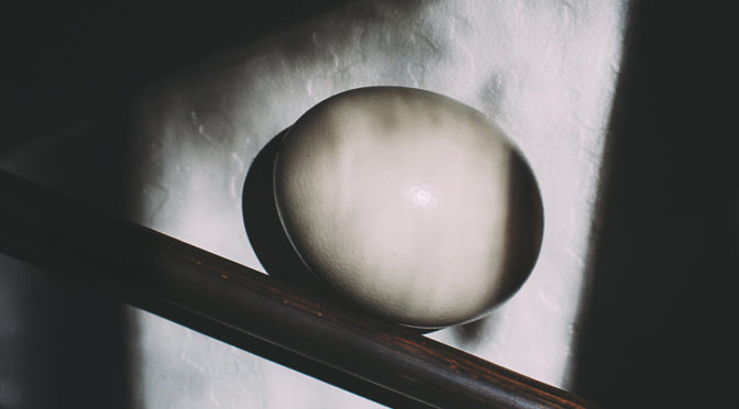 Photo of ostrich egg