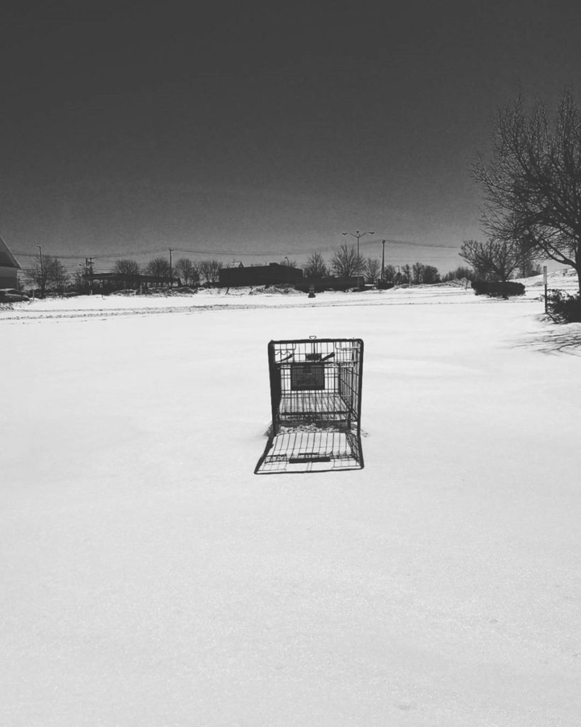 Black and white photo of shopping cart in snow