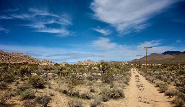 Color photo of Mojave desert