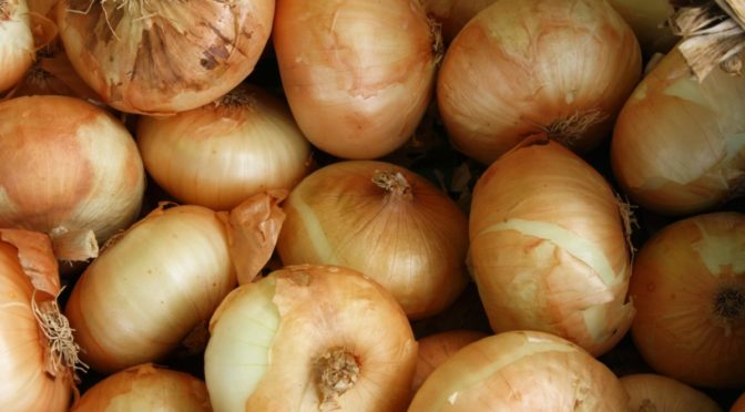 Photo of Vidalia onions