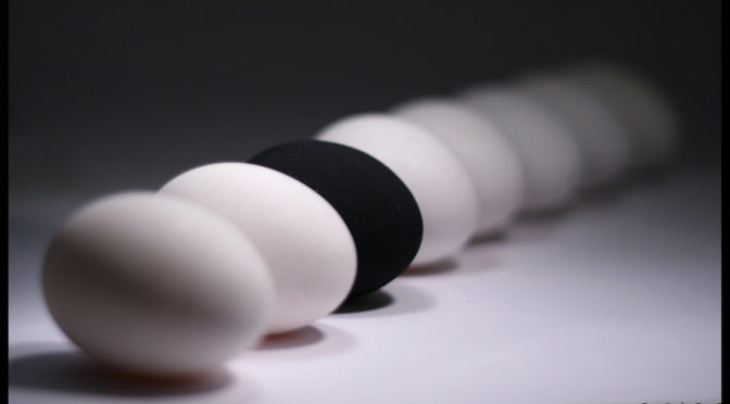 line of all white eggs, one black