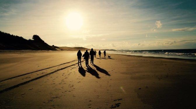 empty beach, a dog, a few people