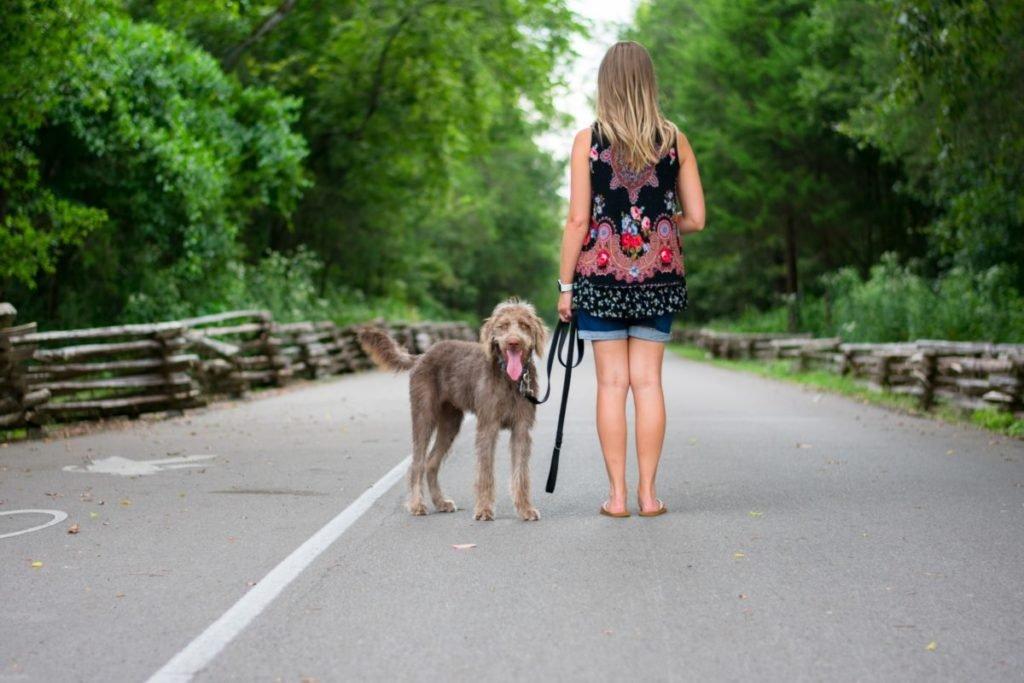 Photo of woman walking dog