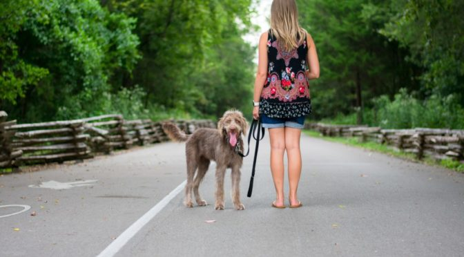 Photo of woman walking dog
