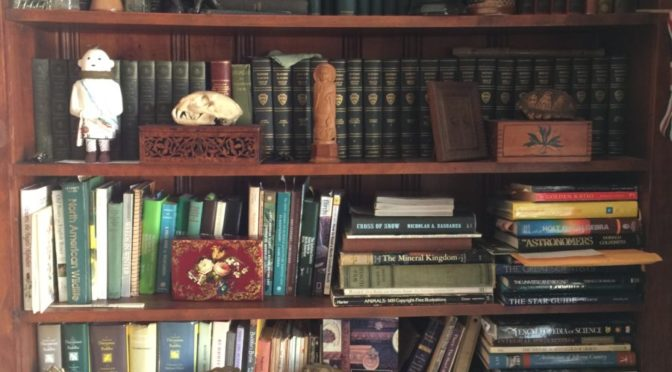 Photo of stuffed bookcase